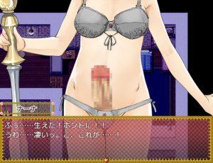 トランス・フィメール・ファンタジー ネクサス_姫エロ4